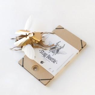 Kit de pliage papier coléoptère doré - Trophée assembli