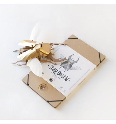 Kit de pliage papier coléoptère doré - Assembli