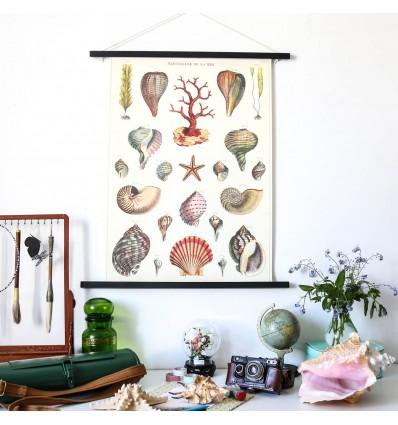 Affiche Merveilles de la mer - Cavallini & Co