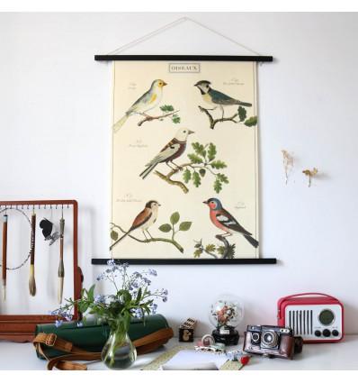 Affiche Histoire naturelle oiseaux sur branche