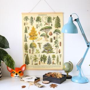 Affiche arbres de la forêt - rétro