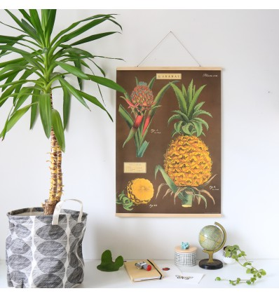 Affiche rétro ananas - Cavallini