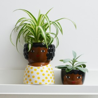 Mini pot Chantelle - Sass & Belle