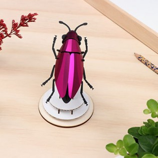 Insecte DIY Jewel Beetle Rose - Assembli