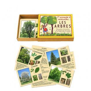 J'apprends à reconnaître les arbres Marc Vidal